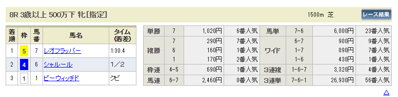 H.R.I(horse race investment)ホースレースインベストメント 的中実績