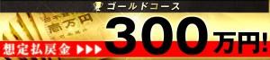 レコード(RECORD) ゴールドコース