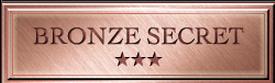 TOP SECRET(トップシークレット) 評価